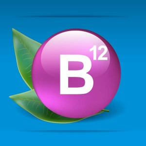 b12-vitmain-2