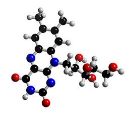 riboflavin1