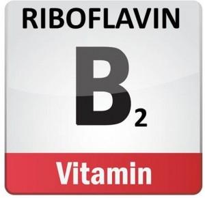 riboflavin2