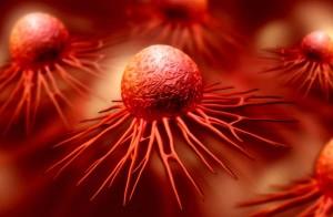 immunrendszer-daganat-sejt-rak