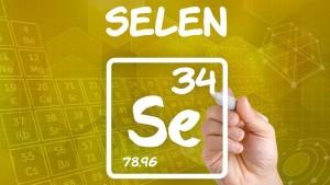 szelen1